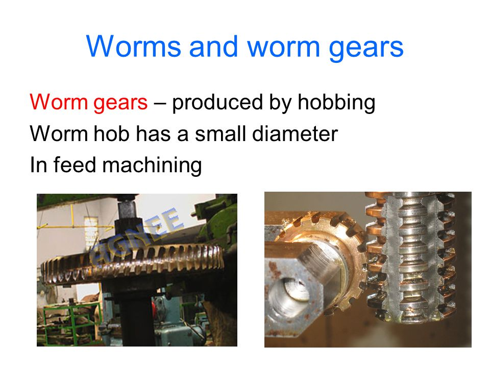 Worms and worm gears Worm gears – produced by hobbing
