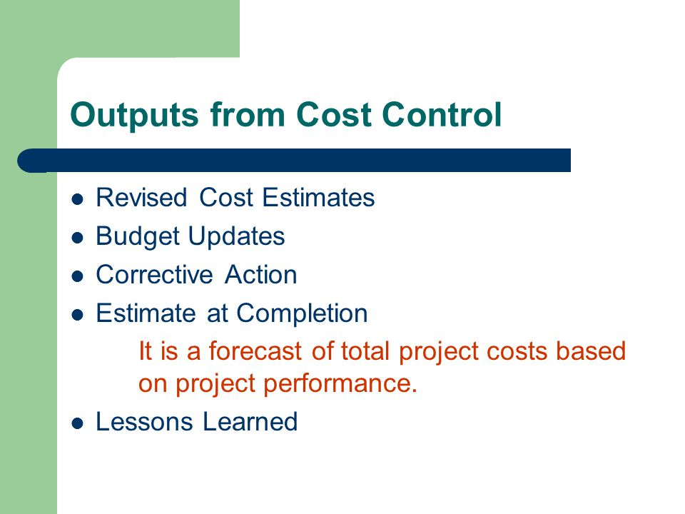 Outputs from Cost Control