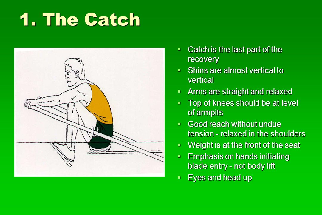 1. The Catch Catch is the last part of the recovery