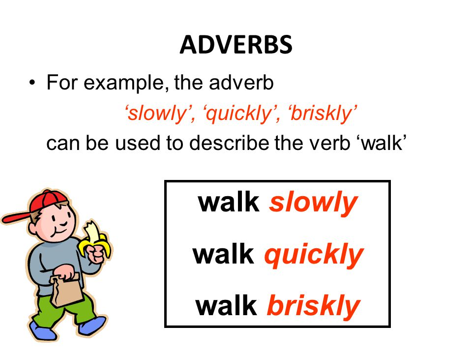 ADVERBS walk slowly walk quickly walk briskly For example, the adverb