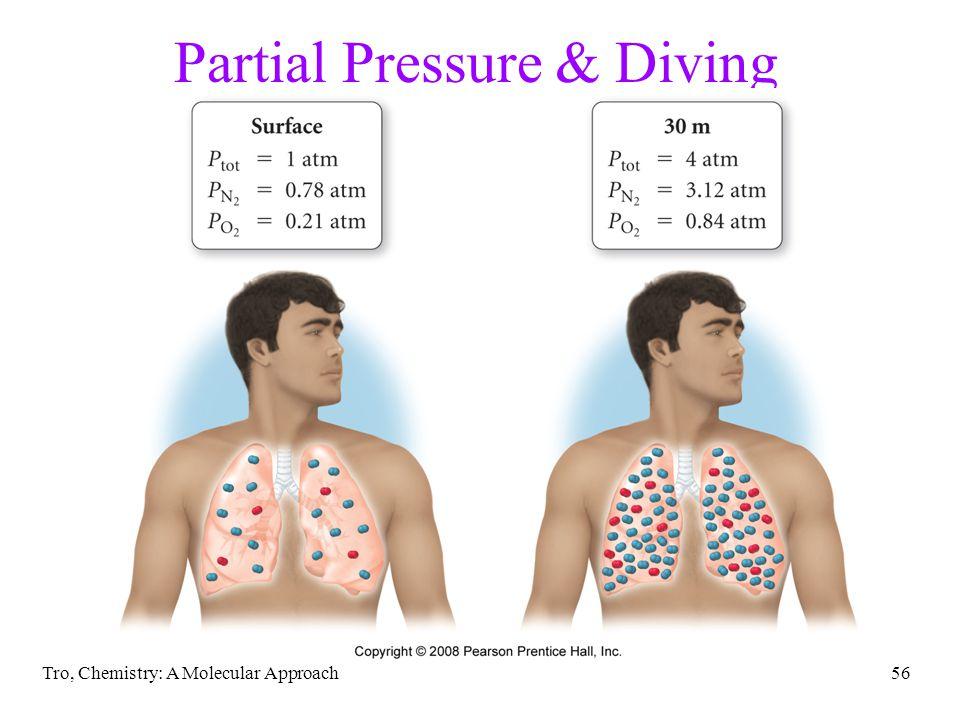 Partial Pressure & Diving