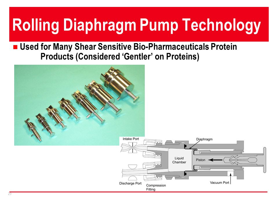 Rolling Diaphragm Pump Technology
