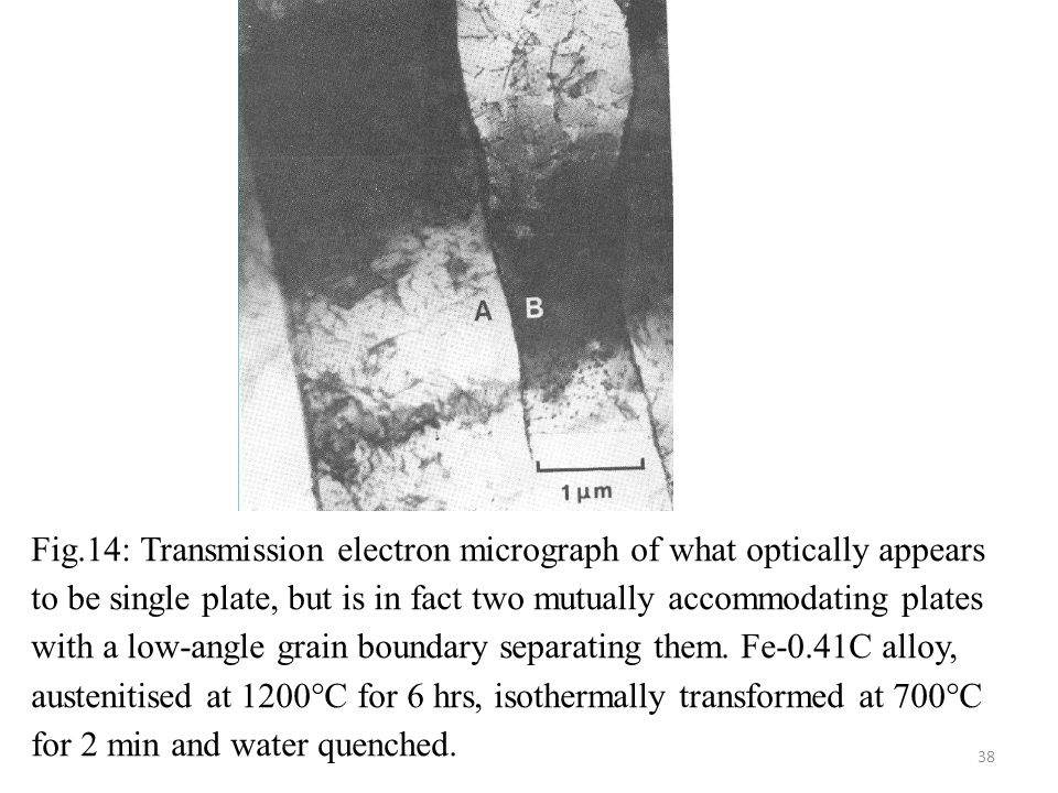 Fig.14: Transmission electron micrograph of what optically appears to be single plate, but is in fact two mutually accommodating plates with a low-angle grain boundary separating them.