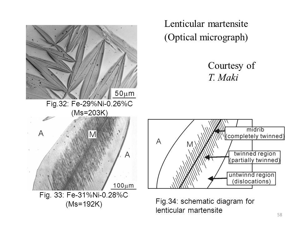 Lenticular martensite