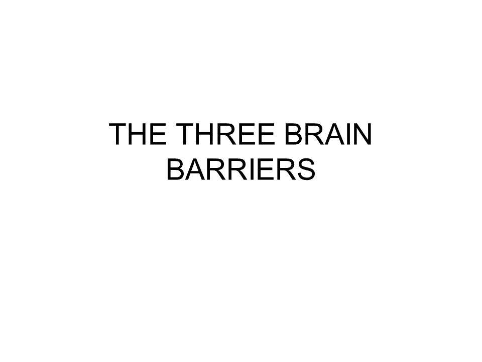 THE THREE BRAIN BARRIERS