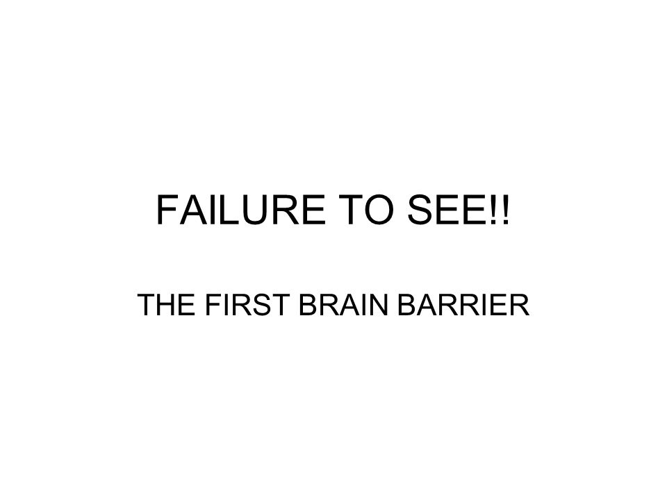 THE FIRST BRAIN BARRIER