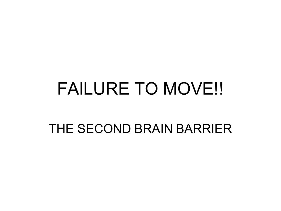 THE SECOND BRAIN BARRIER