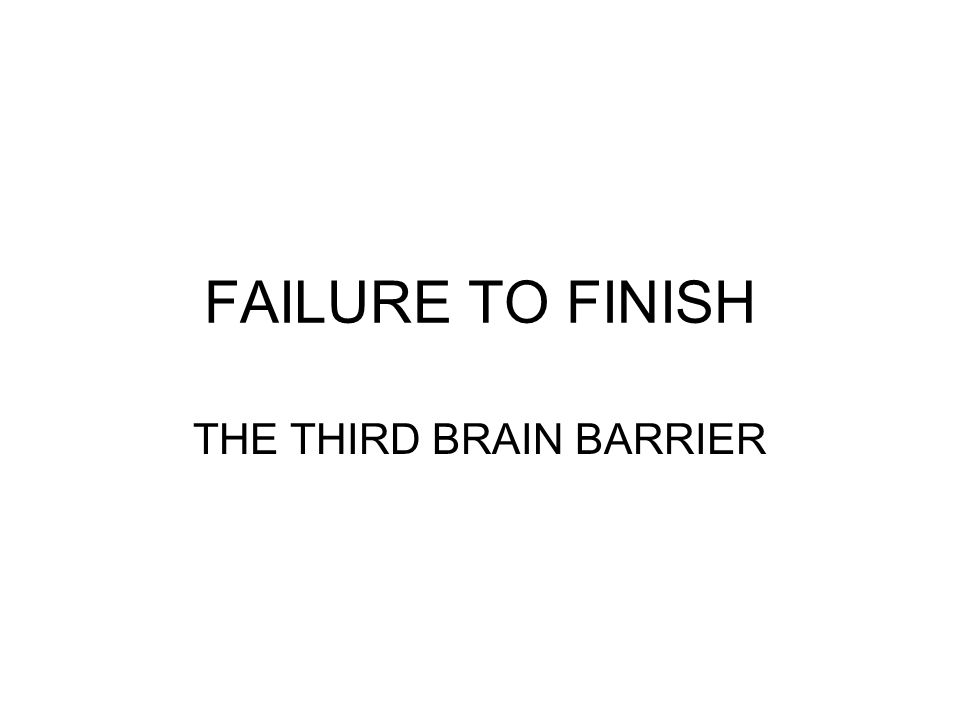 THE THIRD BRAIN BARRIER