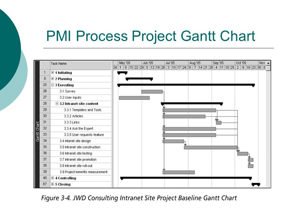 PMI Process Project Gantt Chart