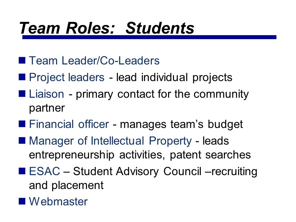 Team Roles: Students Team Leader/Co-Leaders