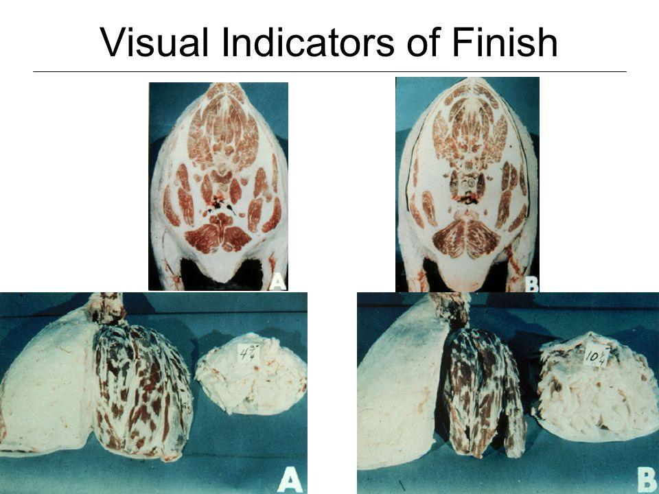 Visual Indicators of Finish