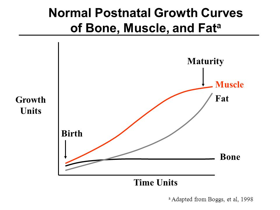 Normal Postnatal Growth Curves of Bone, Muscle, and Fata