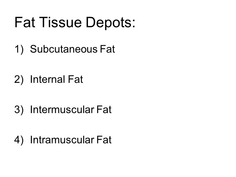 Fat Tissue Depots: Subcutaneous Fat Internal Fat Intermuscular Fat