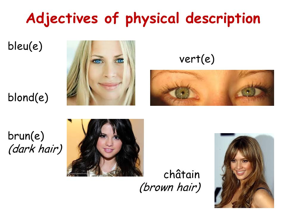 Adjectives of physical description
