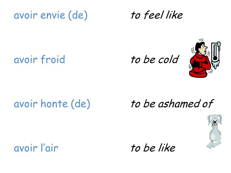 avoir envie (de) to feel like avoir froid to be cold avoir honte (de) to be ashamed of avoir l'air to be like