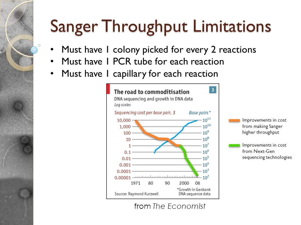 Sanger Throughput Limitations