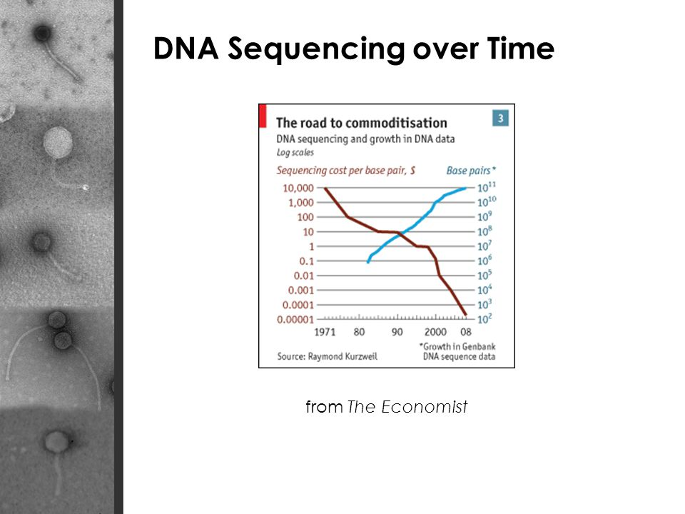 DNA Sequencing over Time