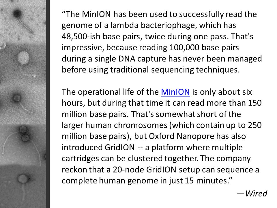 The MinION has been used to successfully read the genome of a lambda bacteriophage, which has 48,500-ish base pairs, twice during one pass. That s impressive, because reading 100,000 base pairs during a single DNA capture has never been managed before using traditional sequencing techniques.