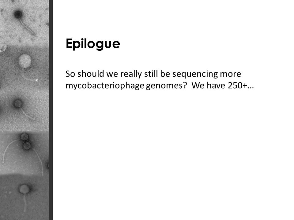 Epilogue So should we really still be sequencing more mycobacteriophage genomes We have 250+…