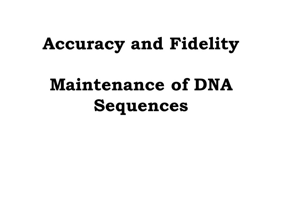 Accuracy and Fidelity Maintenance of DNA Sequences