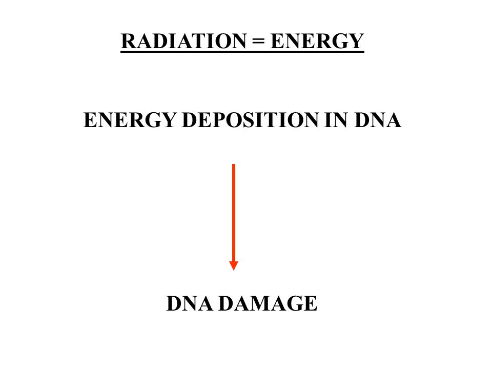 ENERGY DEPOSITION IN DNA