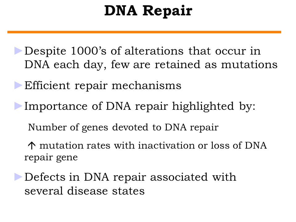 DNA Repair Despite 1000's of alterations that occur in DNA each day, few are retained as mutations.