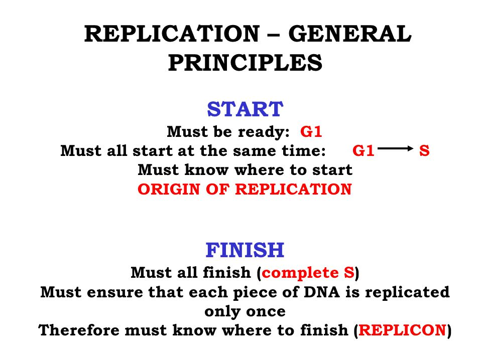 START FINISH REPLICATION – GENERAL PRINCIPLES Must be ready: G1