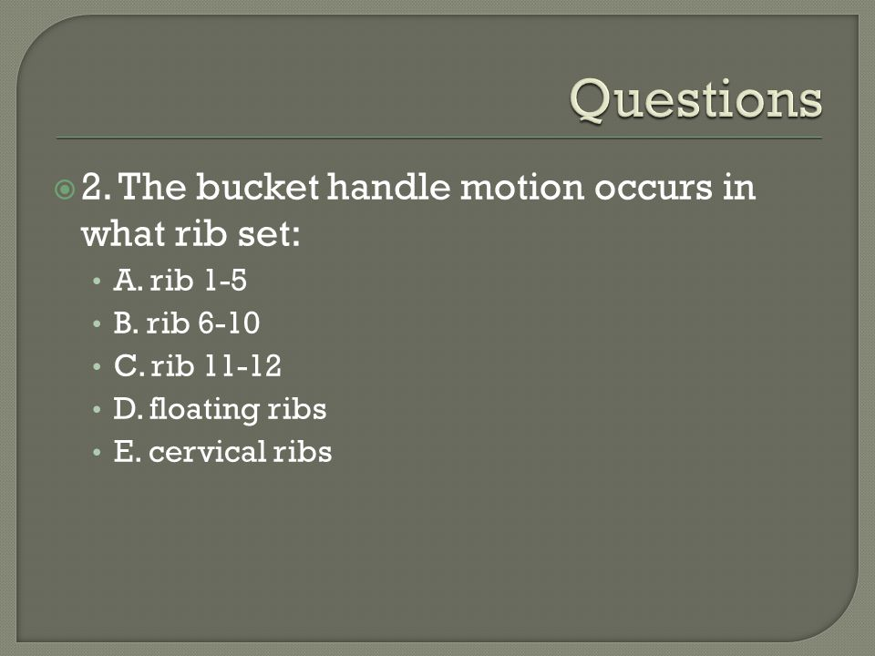 Questions 2. The bucket handle motion occurs in what rib set: