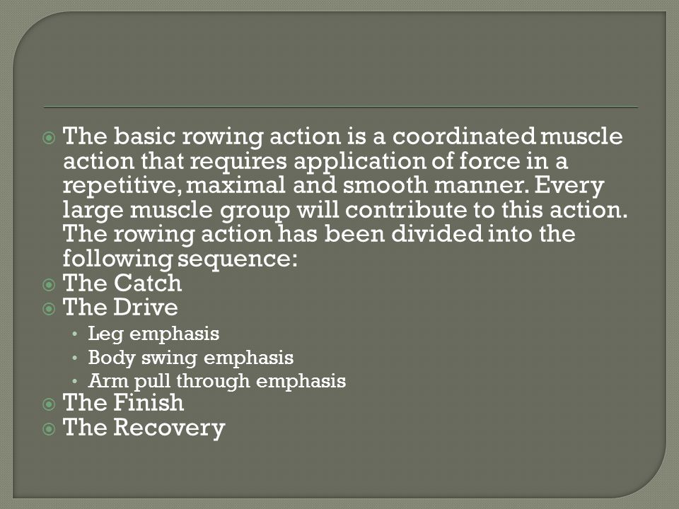 The basic rowing action is a coordinated muscle action that requires application of force in a repetitive, maximal and smooth manner. Every large muscle group will contribute to this action. The rowing action has been divided into the following sequence: