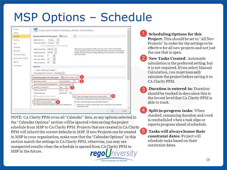 MSP Options – Schedule