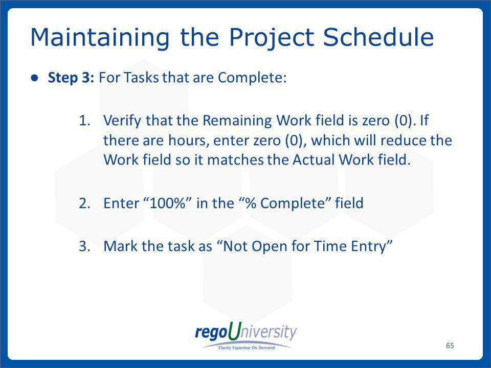 Maintaining the Project Schedule