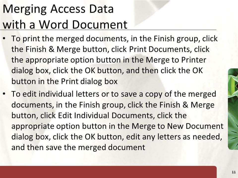Merging Access Data with a Word Document