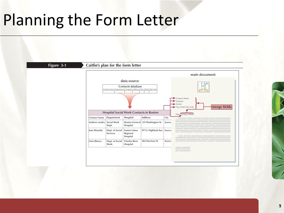 Planning the Form Letter