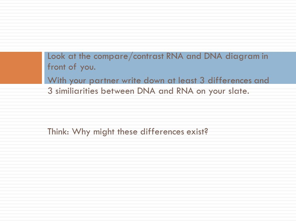 Look at the compare/contrast RNA and DNA diagram in front of you.