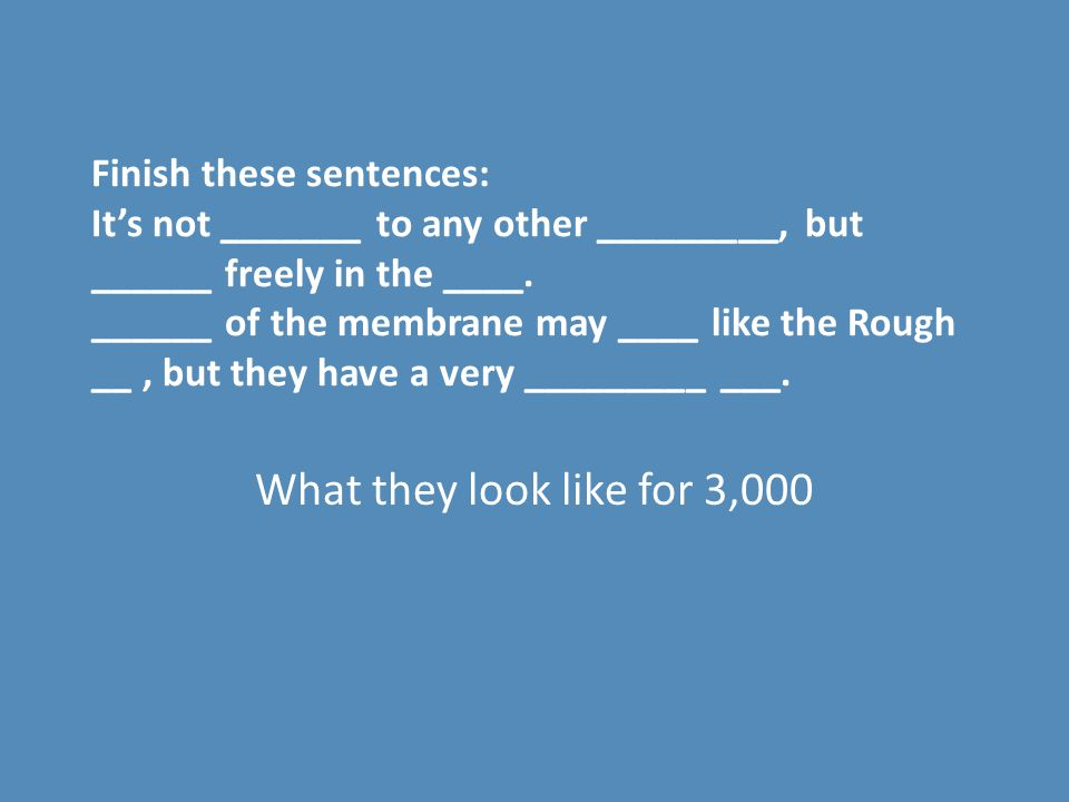 Finish these sentences: It's not _______ to any other _________, but ______ freely in the ____. ______ of the membrane may ____ like the Rough __ , but they have a very _________ ___.