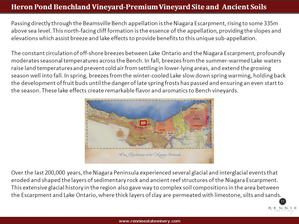 Heron Pond Benchland Vineyard-Premium Vineyard Site and Ancient Soils