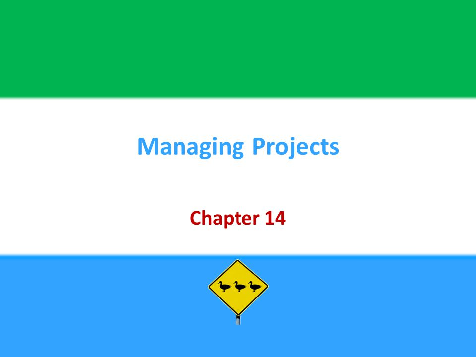 Managing Projects Chapter 14