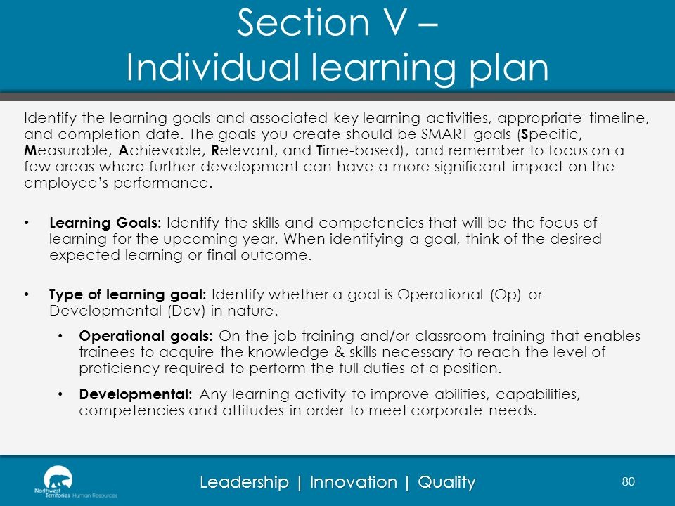 Section V – Individual learning plan