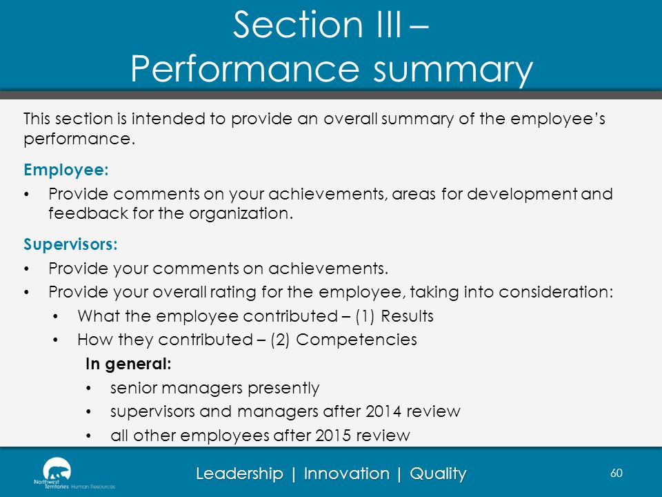 Section III – Performance summary
