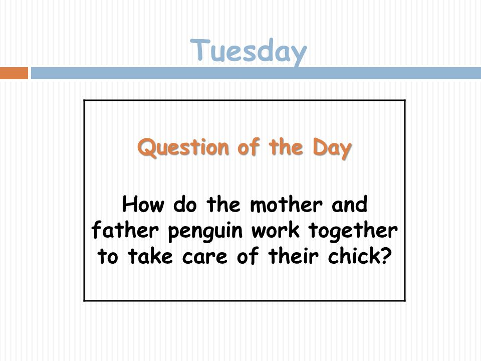 Tuesday Question of the Day