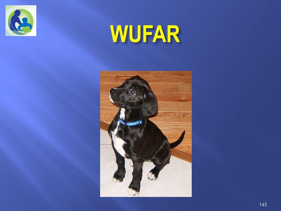 WUFAR Wisconsin Uniform Financial Accounting Requirements