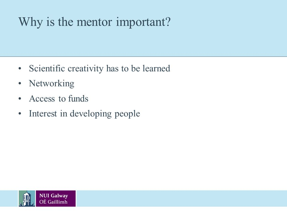 Why is the mentor important