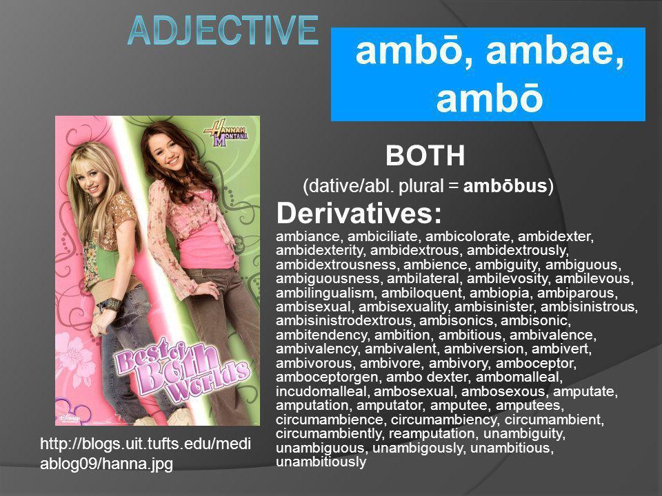 (dative/abl. plural = ambōbus)