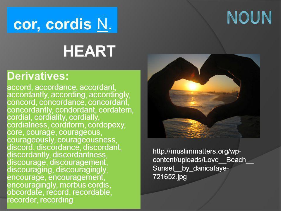 Noun cor, cordis N. HEART Derivatives: