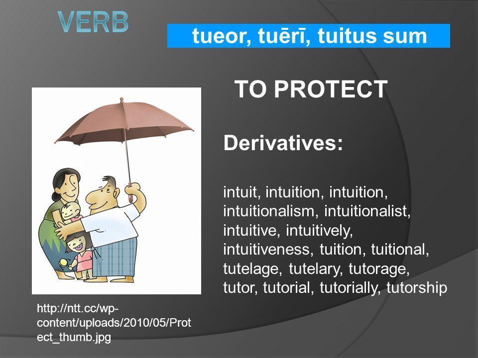 Verb TO PROTECT tueor, tuērī, tuitus sum Derivatives: