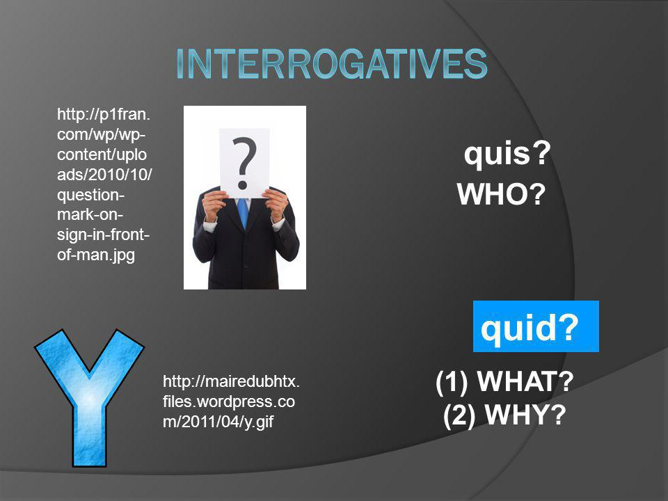Interrogatives quid quis WHO (1) WHAT (2) WHY
