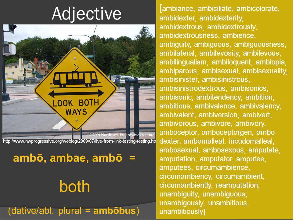 Adjective both ambō, ambae, ambō =