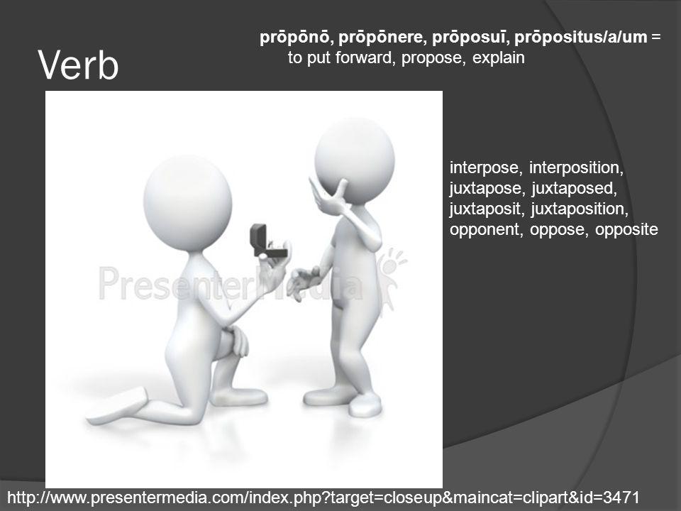 Verb prōpōnō, prōpōnere, prōposuī, prōpositus/a/um = to put forward, propose, explain.