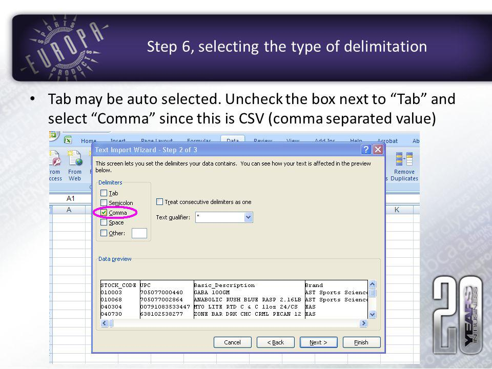 Step 6, selecting the type of delimitation
