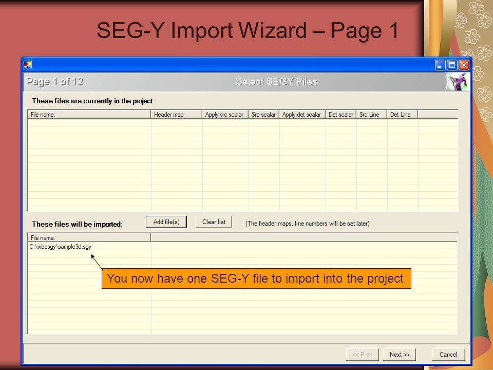 SEG-Y Import Wizard – Page 1